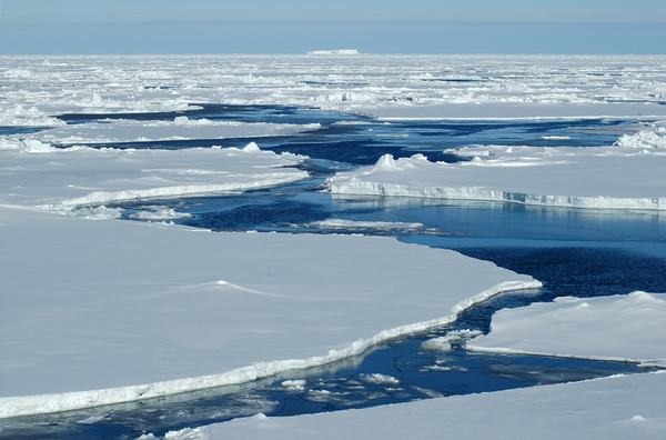 Det Arktiske Hav Armin Rose  shutterstock 6749344