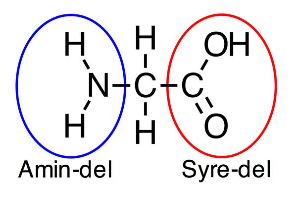 glycin bio