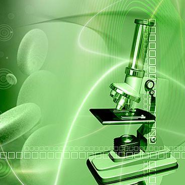 Mikroskopet