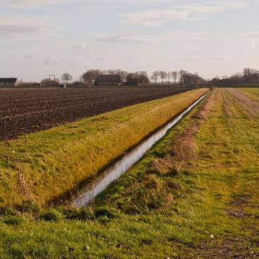 Vandløb – natur eller afvanding?