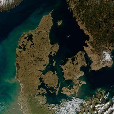 Fotosyntese i havet