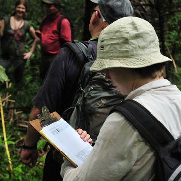 Med en biolog i regnskoven