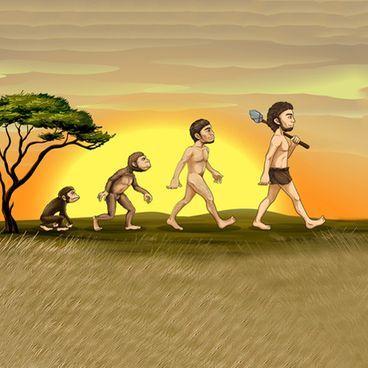 Livets udvikling