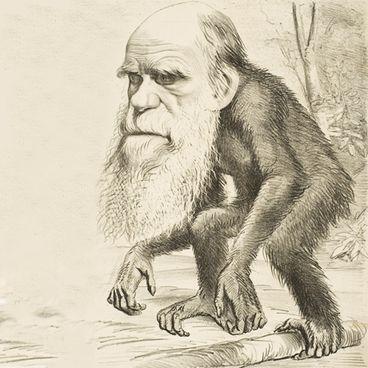 Darwins evolutionsteori
